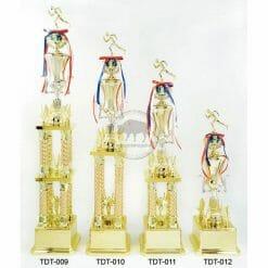TDT 跑步獎盃價格
