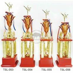 TSL 跆拳道獎盃設計