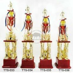 TTS 桌球獎盃設計