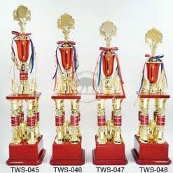 TWS 冠軍獎盃